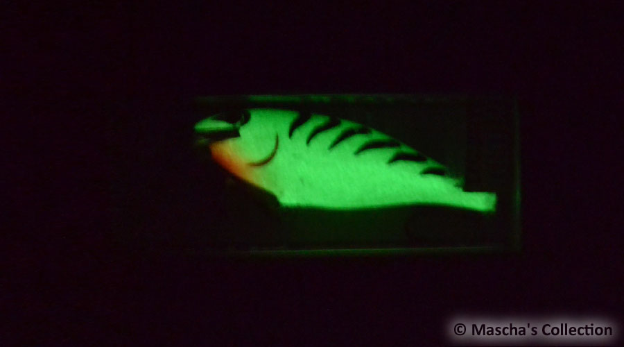 Rapala SR07 GGT - glow in dark