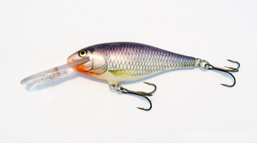 Silver Shiner (SSH) - 3rd generation